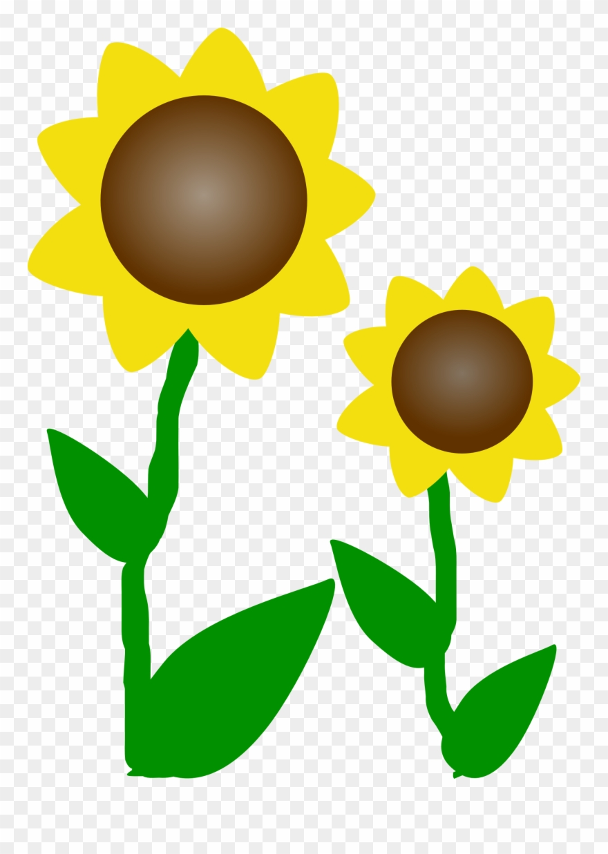 photo about Printable Clip Art named Sunflower Clip Artwork Cost-free Printable Clipart Panda No cost