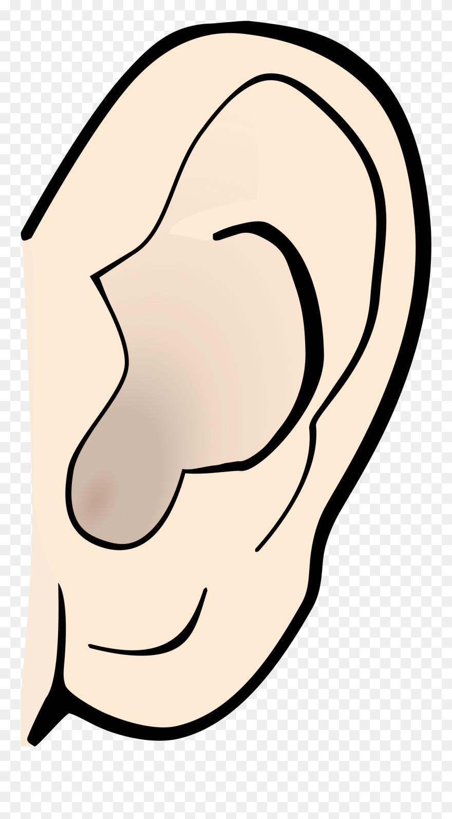 Listening Ear Clipart Clip Art Png