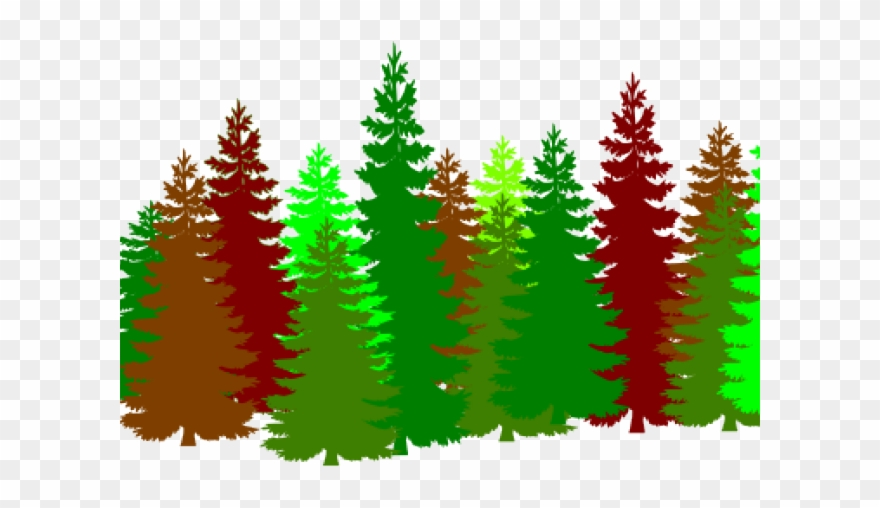 19 Forest Clipart Huge Freebie Download For Powerpoint Lots Of Cartoon Trees Png Download 8822 Pinclipart Pine cone icon forest and christmas emblem vector. 19 forest clipart huge freebie download