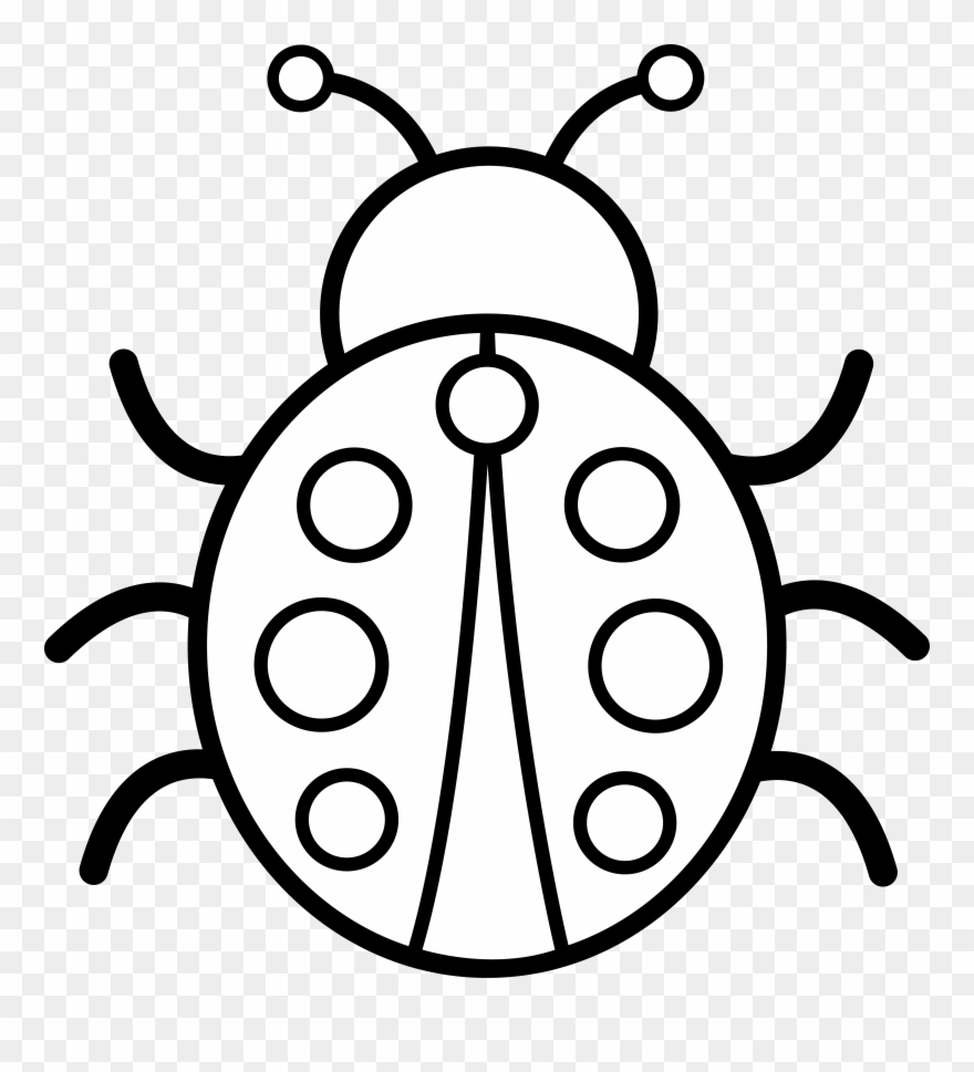 Black And White Pictures Colouring Image Of A Bug Clipart 9812