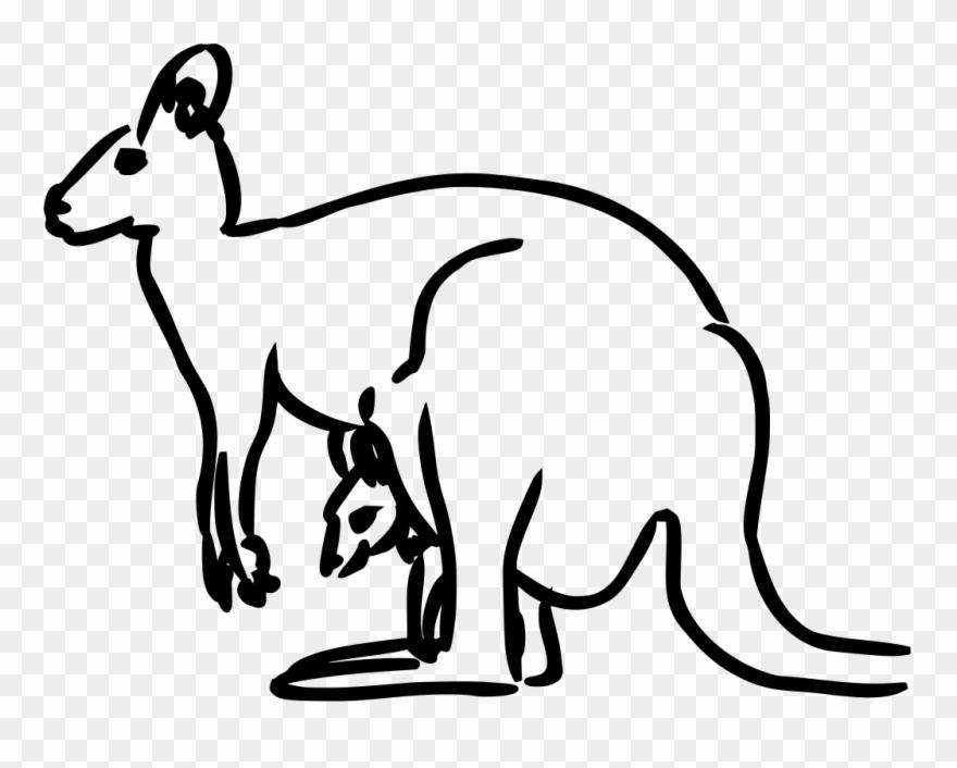 Mammal Clipart Animal Drawing