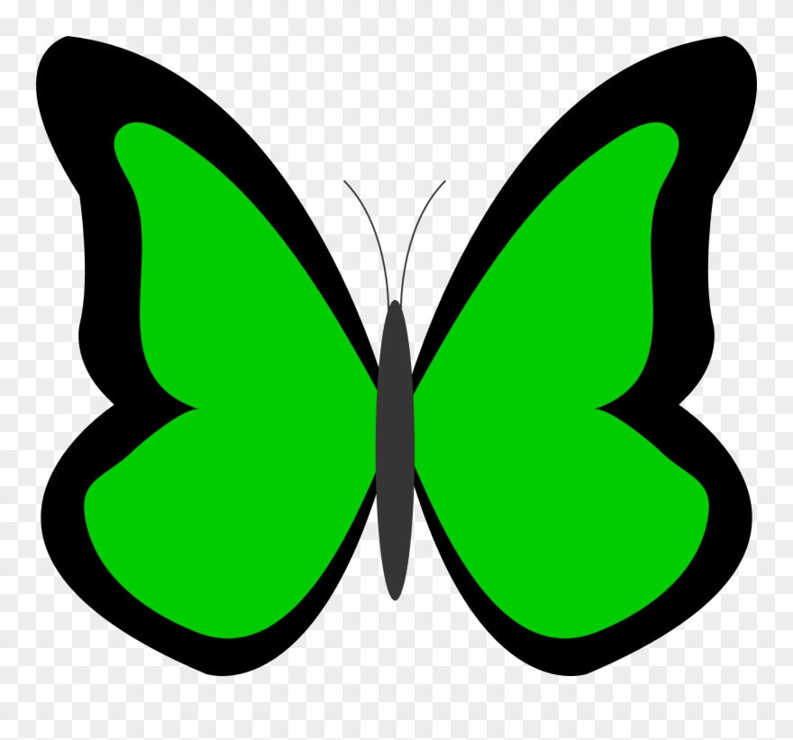 Butterfly green. Sky clipart clip art