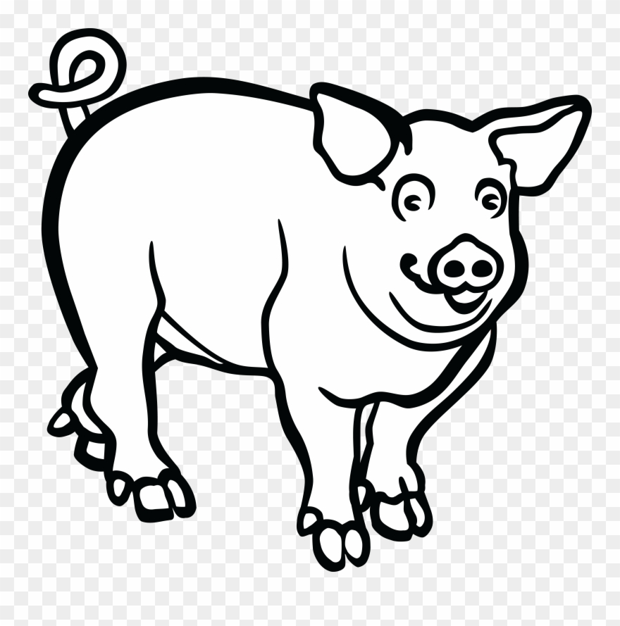 Pig drawing. Wild boar line art
