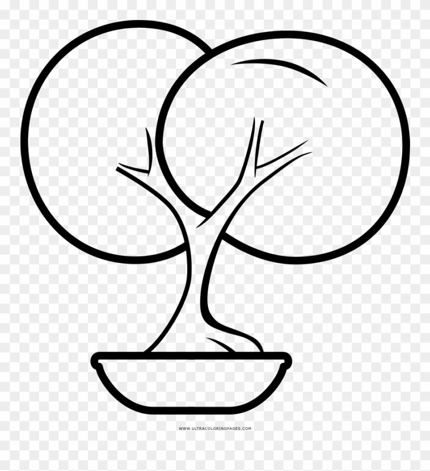 Bonsai Tree Coloring Page Drawing Clipart Full Size Clipart 1037904 Pinclipart