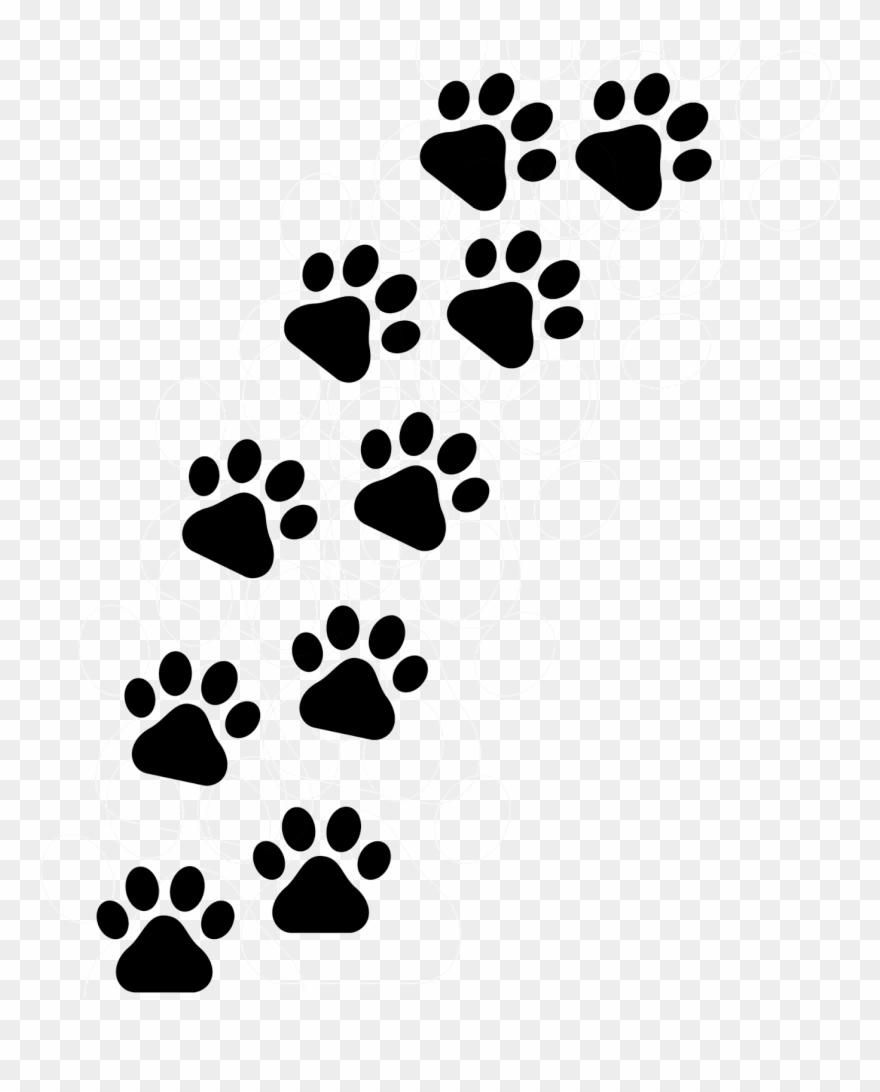 Patinhas De Cachorro Png Footprint Cat Clipart 1055779
