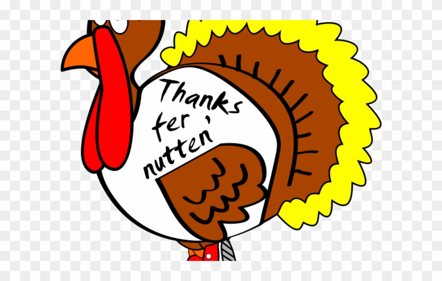 Turkey Bird Clipart Brown Turkey Thanksgiving Funny Turkeys Png