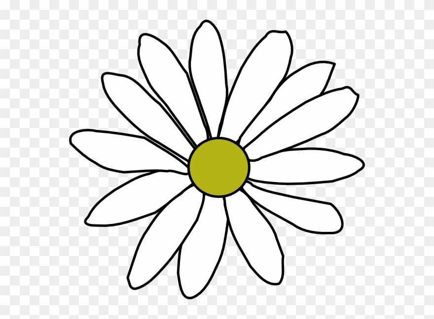 Flower Outline Png Clipart (#116787)