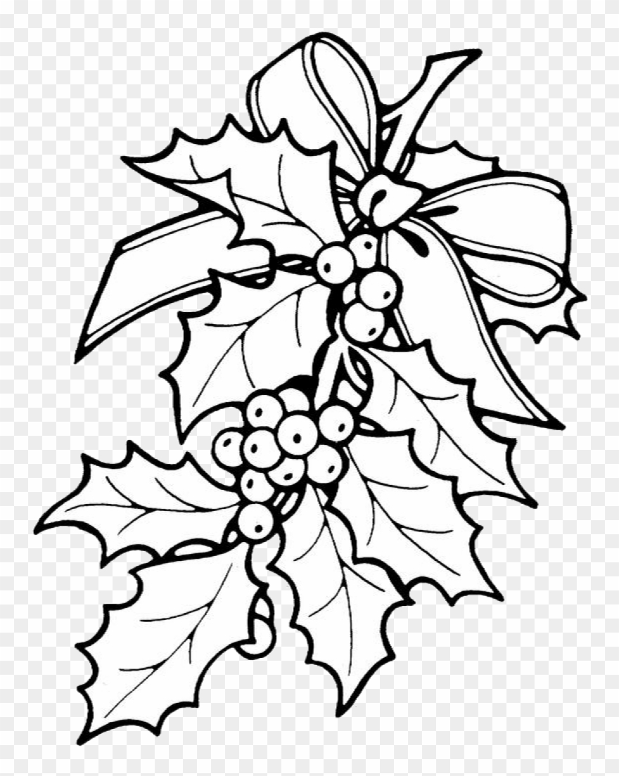 Holly Leaves Coloring Sheets Printable Christmas Ornament Holly Coloring Pages Clipart 1126134 Pinclipart