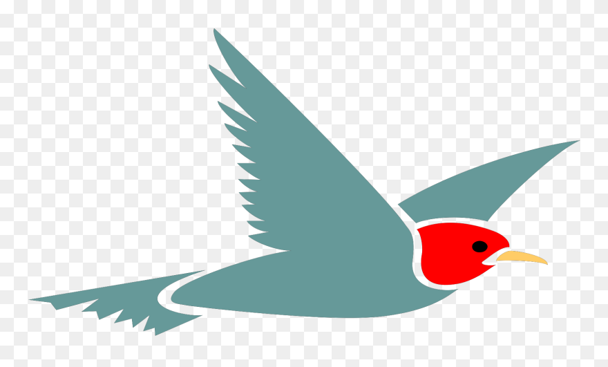 Pigeon Clipart Air Animal Free Flying Bird Clipart Png Download 1128645 Pinclipart