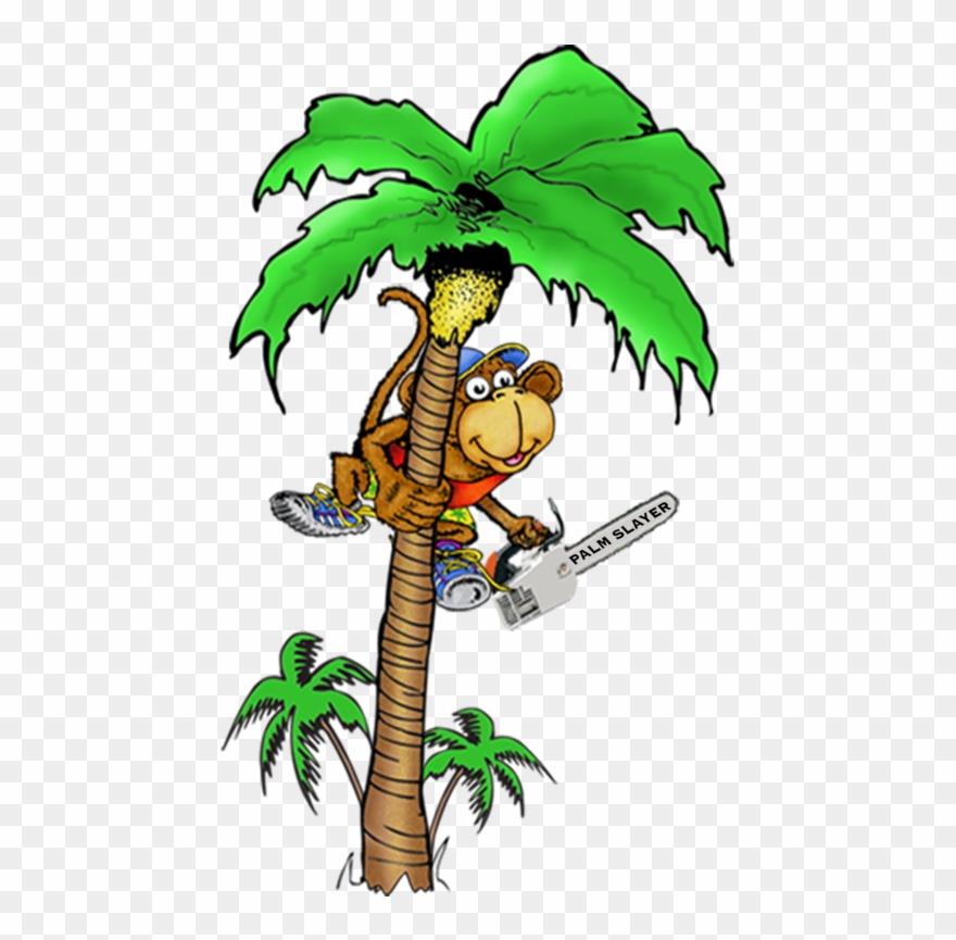 Top Cartoon Monkeys In Trees Vector Photos » Free Vector Art, Images,  Graphics & Clipart