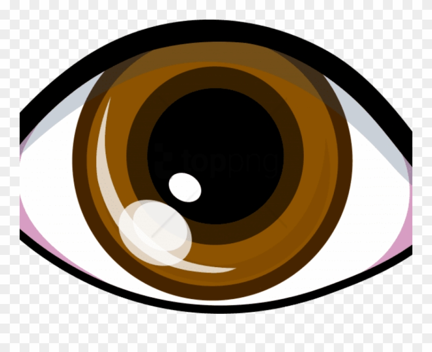Eyes brown. Hazel clipart bron transparent