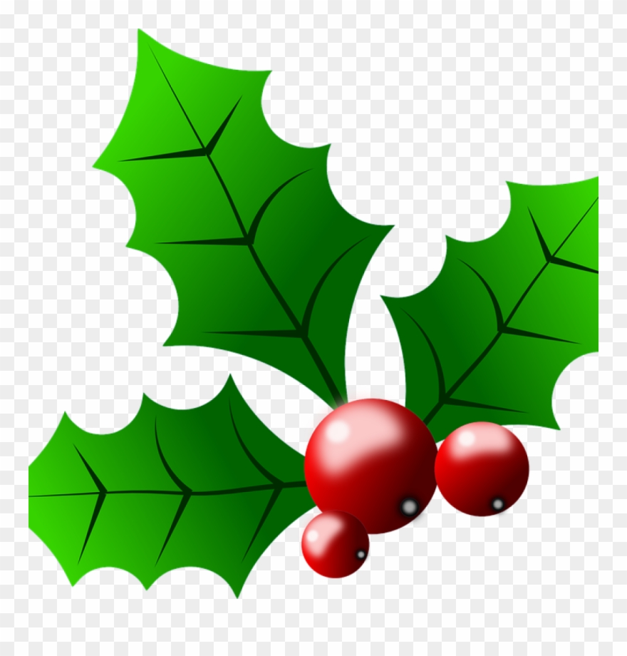 Clipart christmas holly. Images free collection of