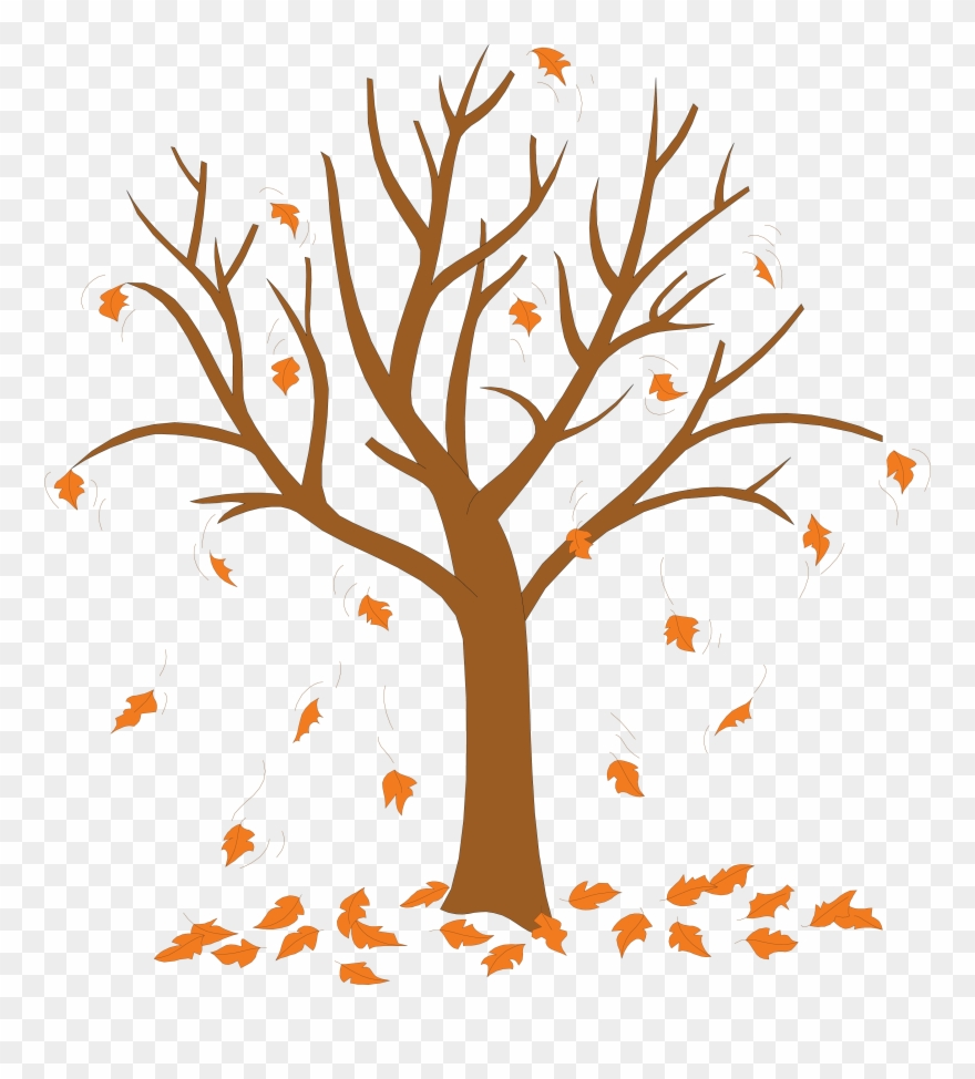 Trees Without Leaves Coloring Pages Tree With Leaves Falling Off