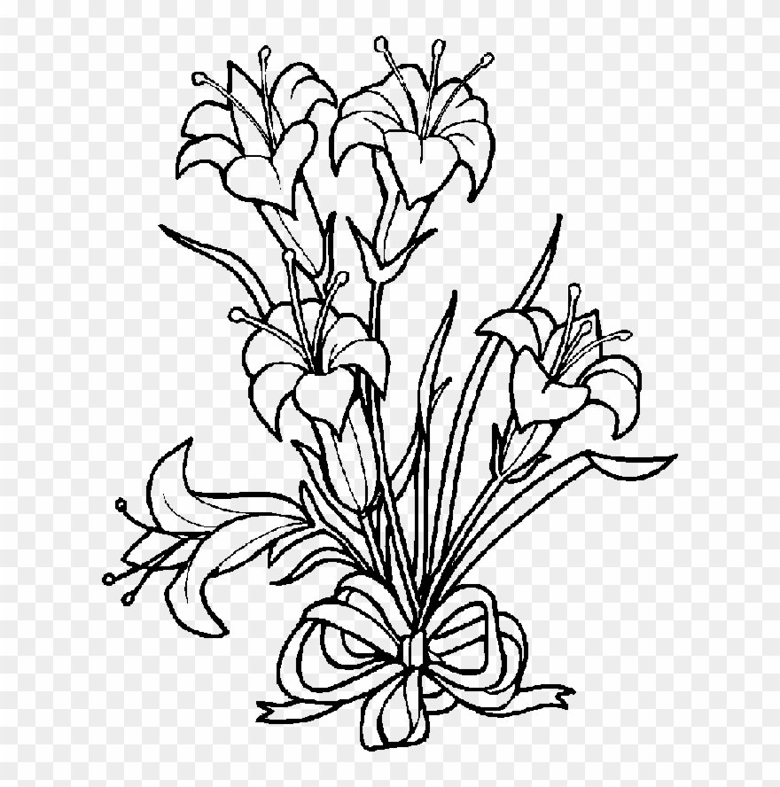 Lily Clipart Black And White - Easter Lily Coloring Pages - Png Download