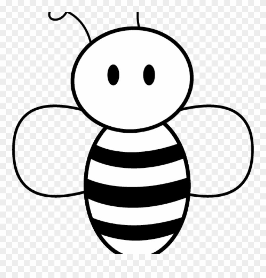 Clip arts easy. Honey bee pictures art