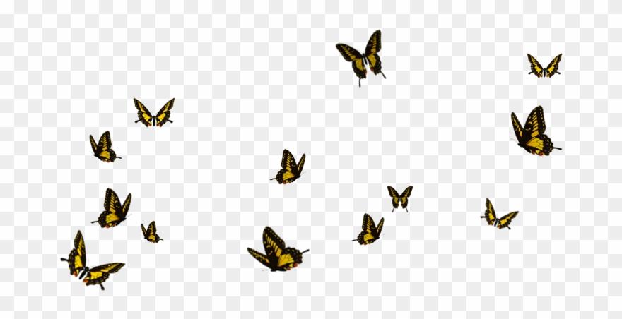 8fcf04f8e Butterflies Flying Away Png Clipart (#1257853) - PinClipart