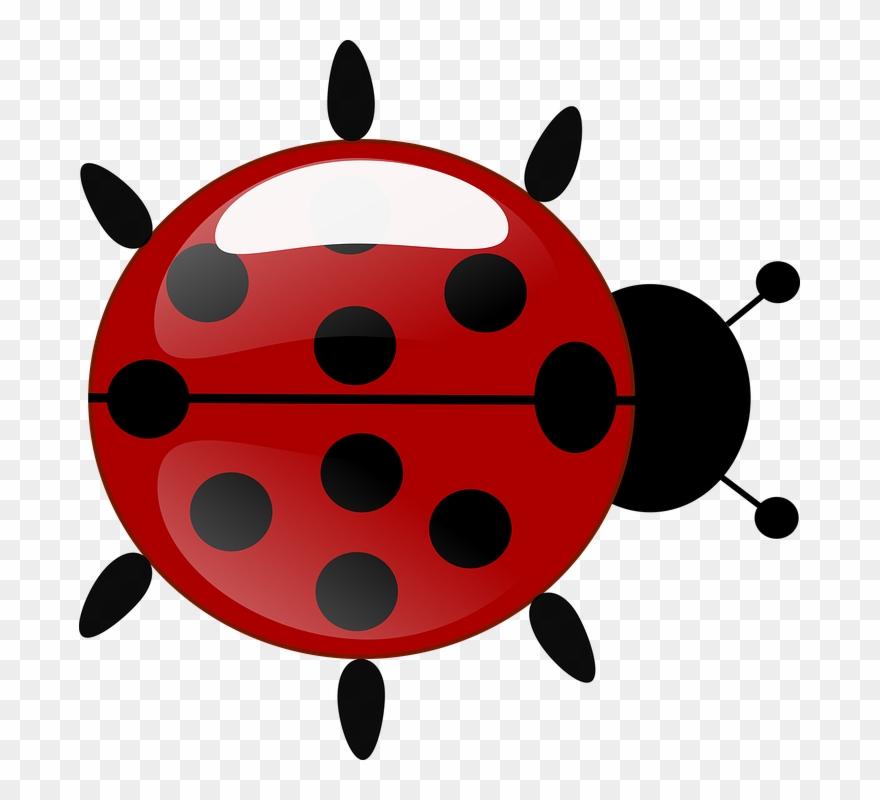 Cute Ladybug Clipart 13, Buy Clip Art - Joaninha Da ...