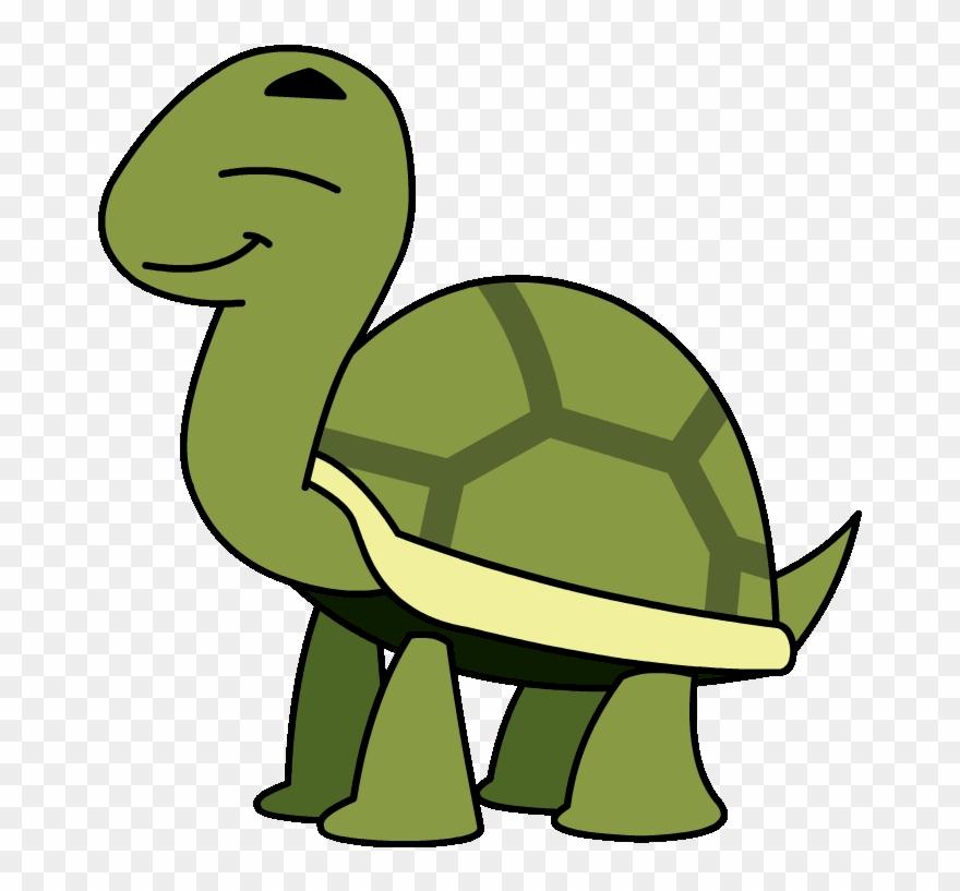 Animated Turtle Turtle Cartoon Gif Transparent Clipart 1333950