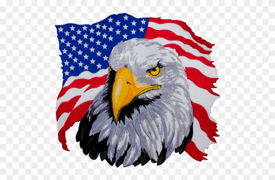 American Flag Eagle Png Clipart 1355164 Pinclipart
