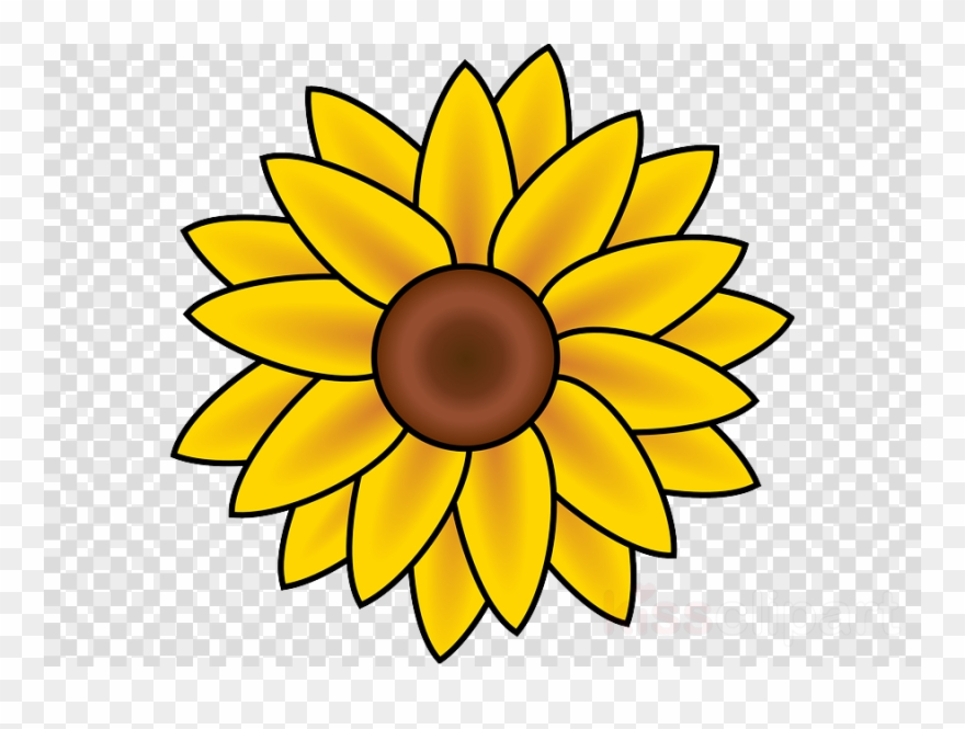 Sunflower August Clipart Drawing Clip Art 20 Off Of 3 Or More
