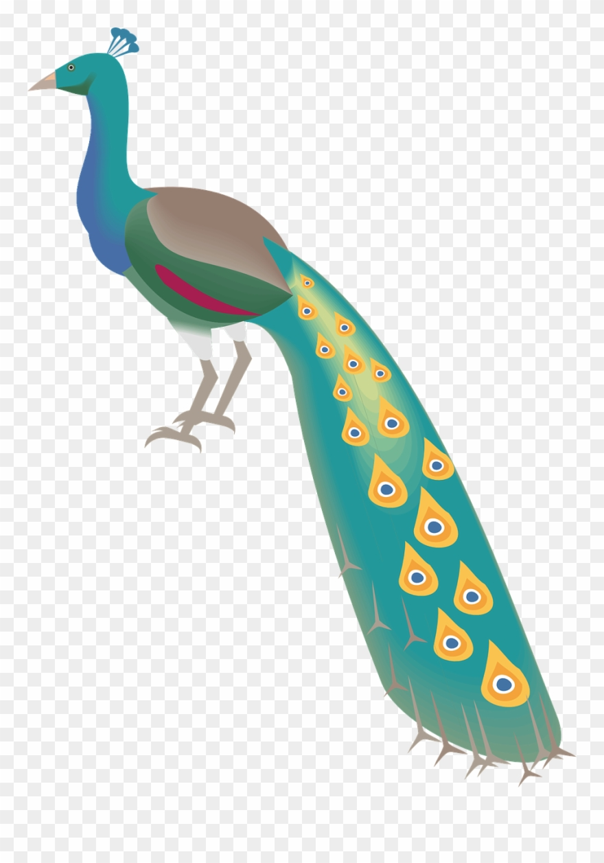 88+ Gambar Burung Merak Dan Gagak Gratis Terbaru