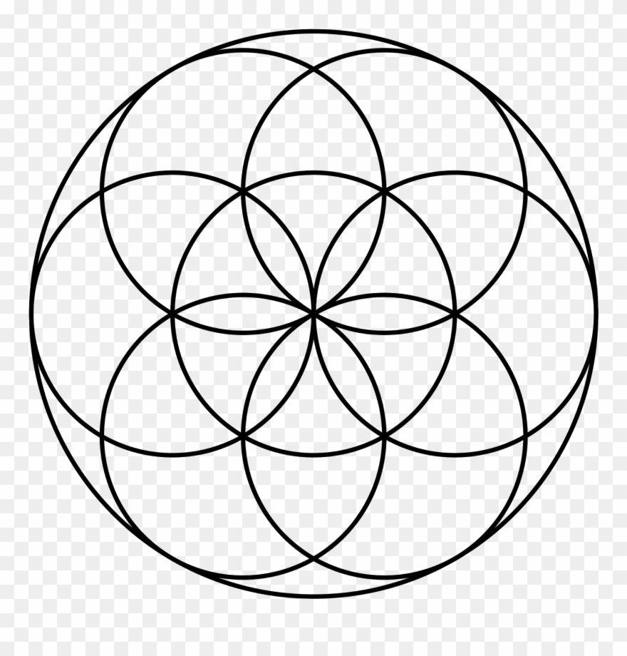 One Central Circle Surrounded By Six Makes The Perfect