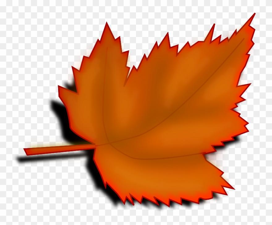 Maple Leaf Clipart November Leaves Tree Leaves Clip Art Png