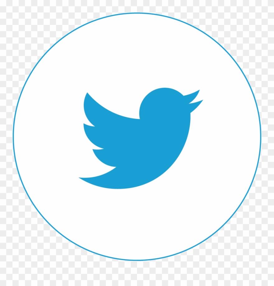 Twitter social media. Follow us on fake