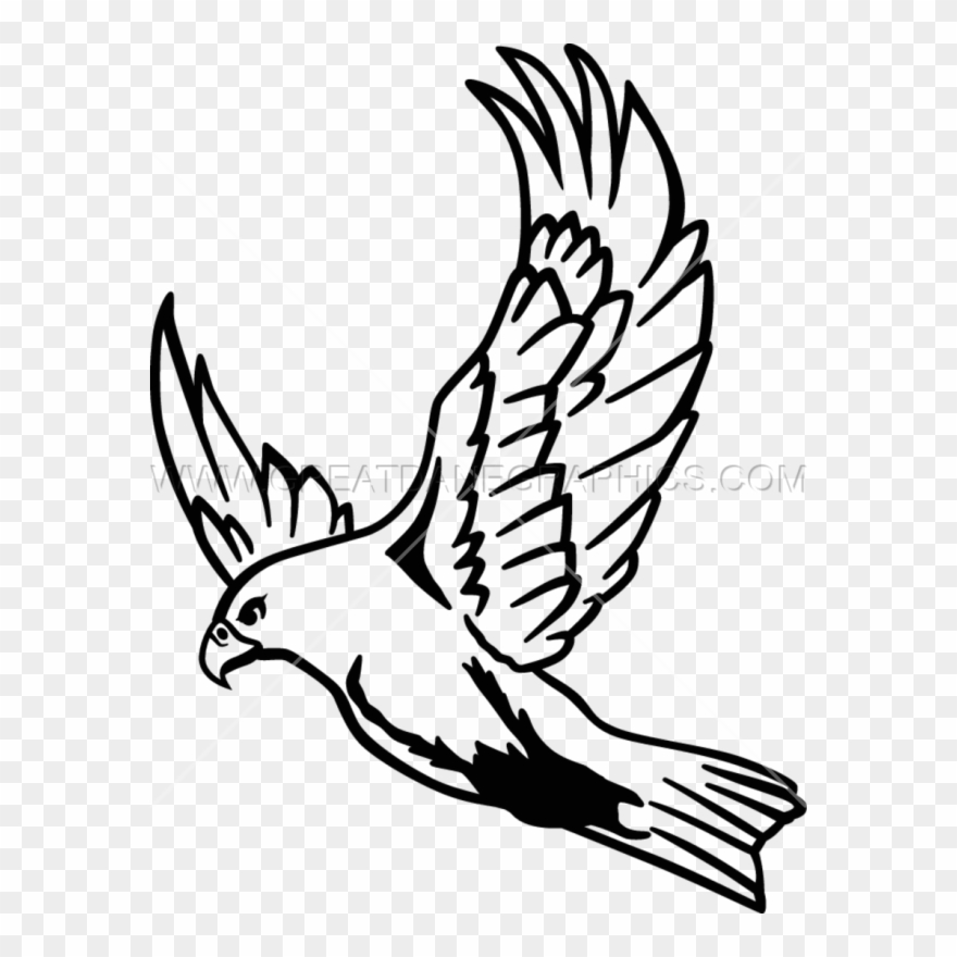 Clip Art Freeuse Download Flying At Getdrawings Com Flying Falcon Drawing Easy Png Download 158684 Pinclipart