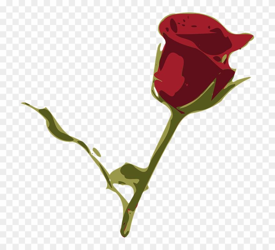 Rosa Flower Cliparts 24 Buy Clip Art Flores Desenho Rosa Vermelha