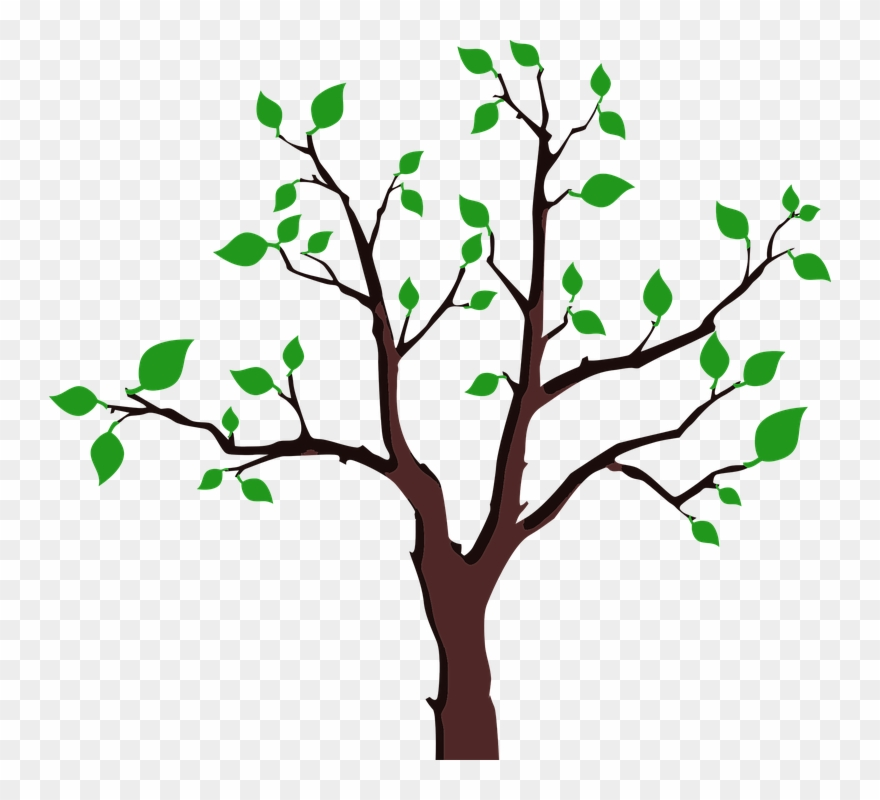 Cartoon Trees With Branches 15 Buy Clip Art Save The Trees Sticker Png Download 1548954 Pinclipart Here you can explore hq cartoon tree transparent illustrations, icons and clipart with filter setting like size, type, color etc. cartoon trees with branches 15 buy