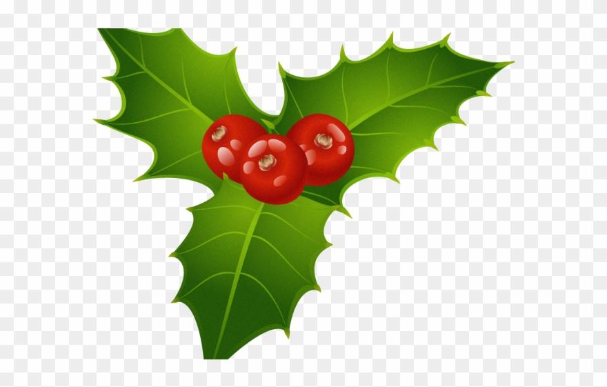 Christmas Leaf Png.Berries Clipart Holly Leaf Christmas Mistletoe Png