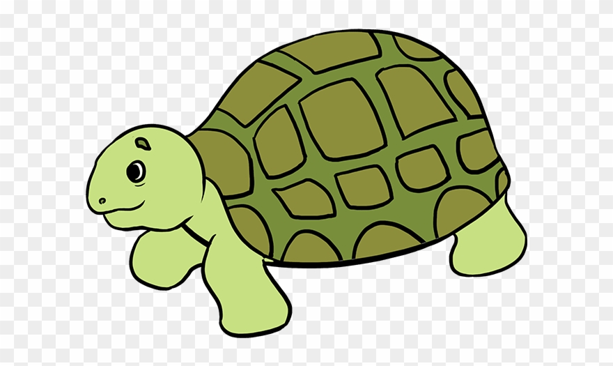 How To Draw Sea Turtle Easy Drawing Of Sea Animals Clipart