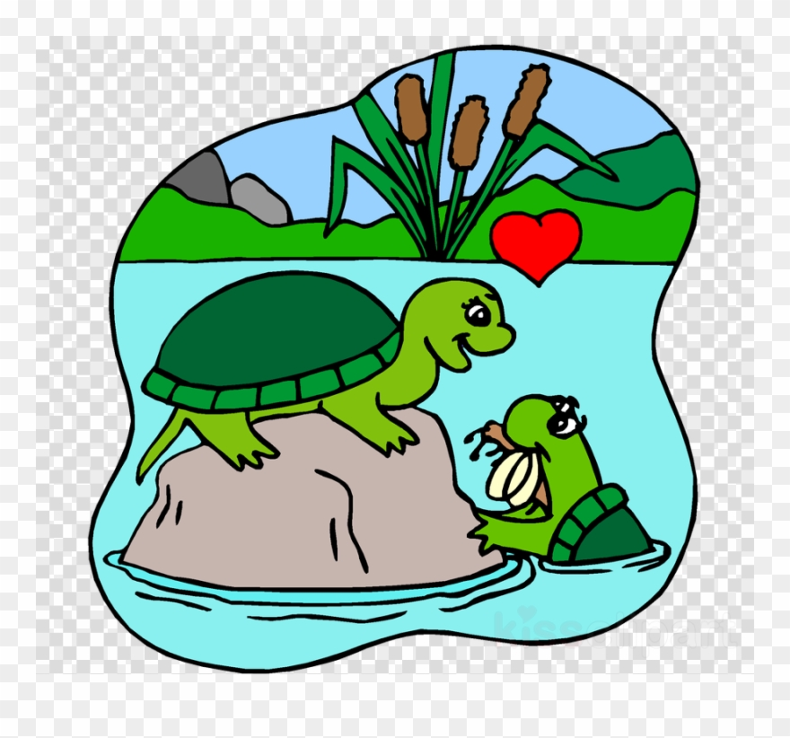 Download Turtles In Love Coloring Pages Clipart Turtle Turtles In