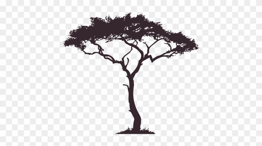 a37410557 African Tree Decal Google Search Tattoo Pinterest - African Tree Silhouette  Png Clipart