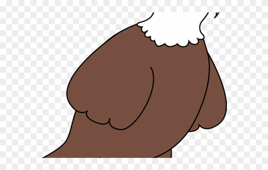 Eagle cute. Bald clipart cartoon png