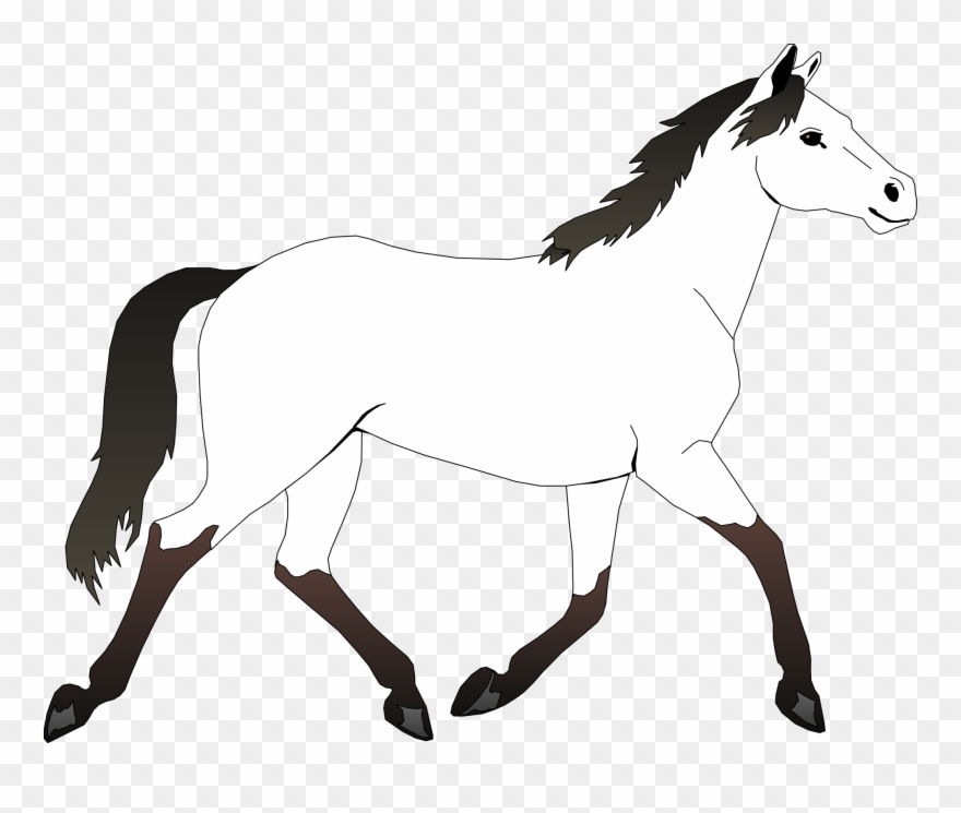 Horse Black White Line Art Coloring Sheet Colouring - Horse Outline Coloring  Pages Clipart (#188418) - PinClipart