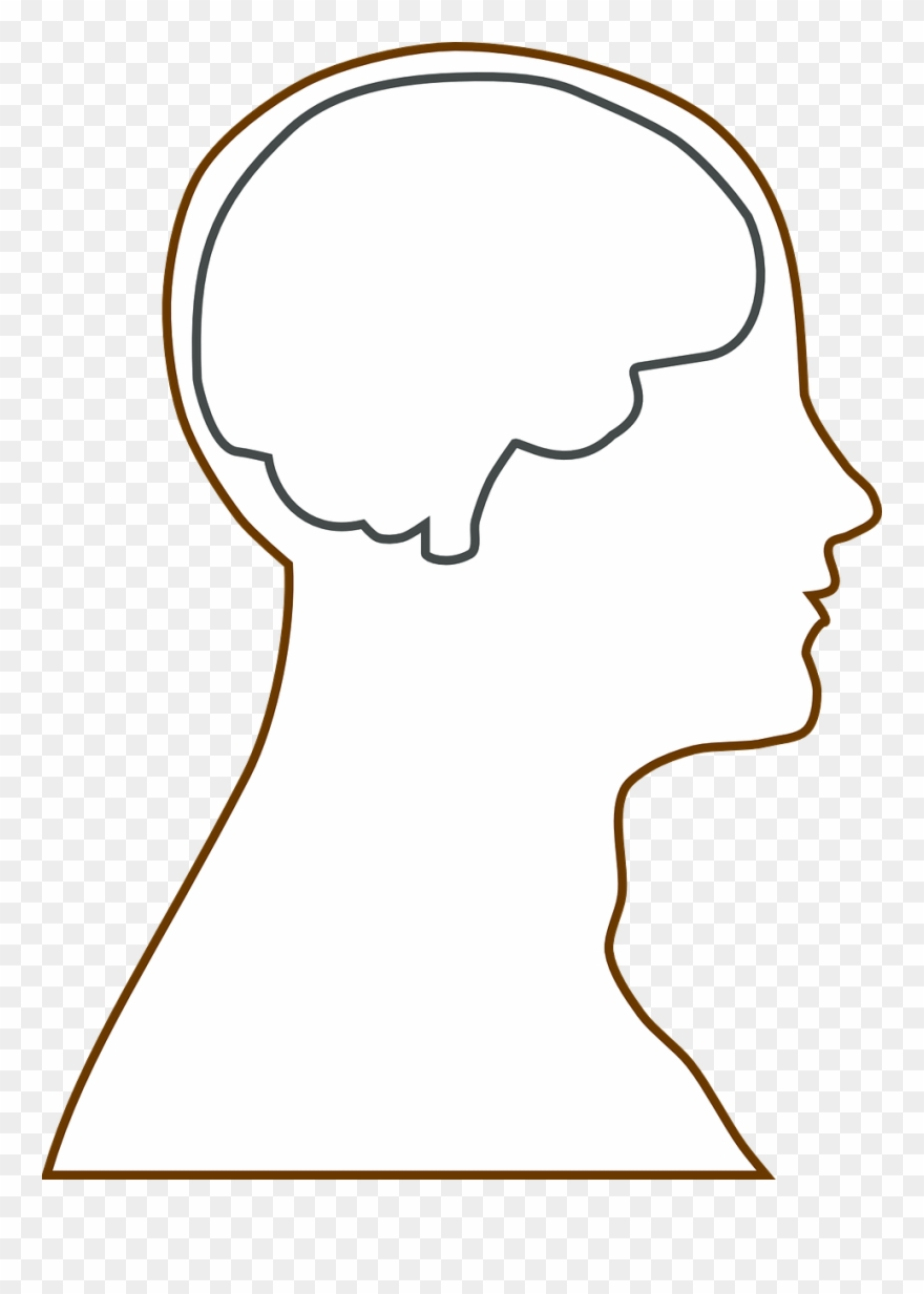 Brain outline. Head science clipart pinclipart