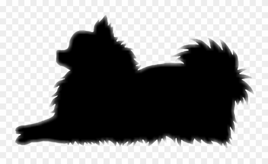 Silhouette Pomeranians A Closer Look At The Pomeranian Dog Clipart
