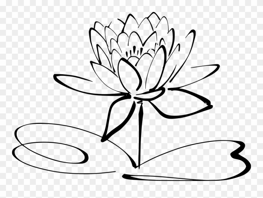 Info Lotus Flower Black And White Clipart Png Download 1877486