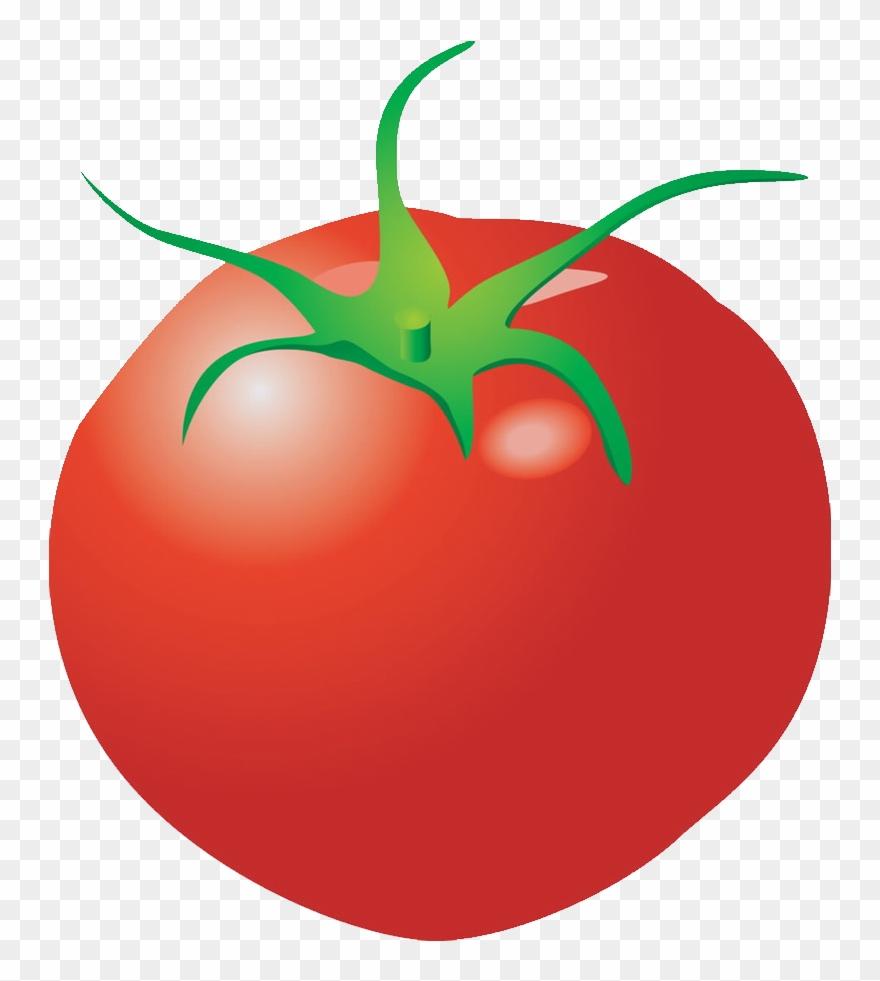 Clipart Vegetables Tomato Verdura Png Dibujos Transparent Png