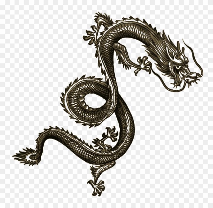 Wei Shen Tatt Dragon Tattoo Arm Chinese Dragon Tattoos