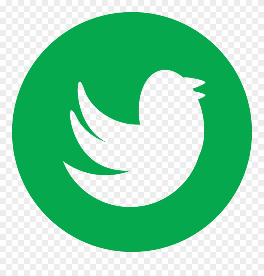 Twitter green. Camera icon clipart pinclipart