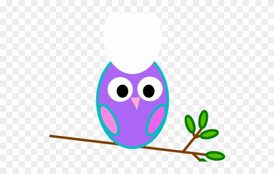 Nurse Clipart Owl - 1st Happy Birthday Png Transparent Png