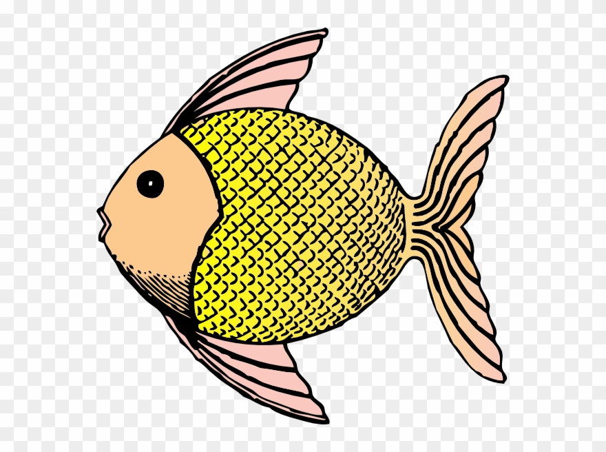 Png All About Animal Scales Fish Clip Art Transparent Png 1926849 Pinclipart