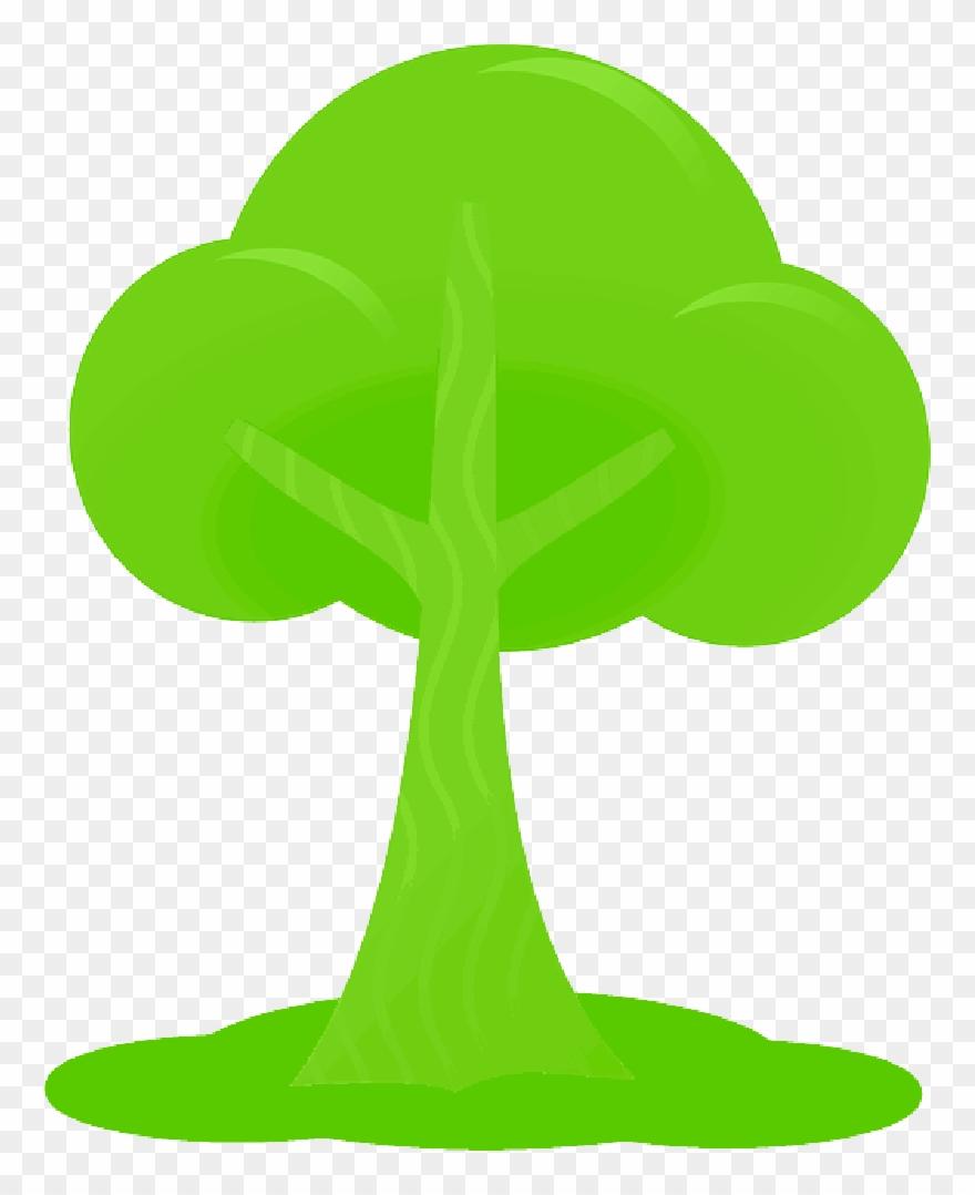 Simple Outline Drawing Tree Cartoon Free Peach Public