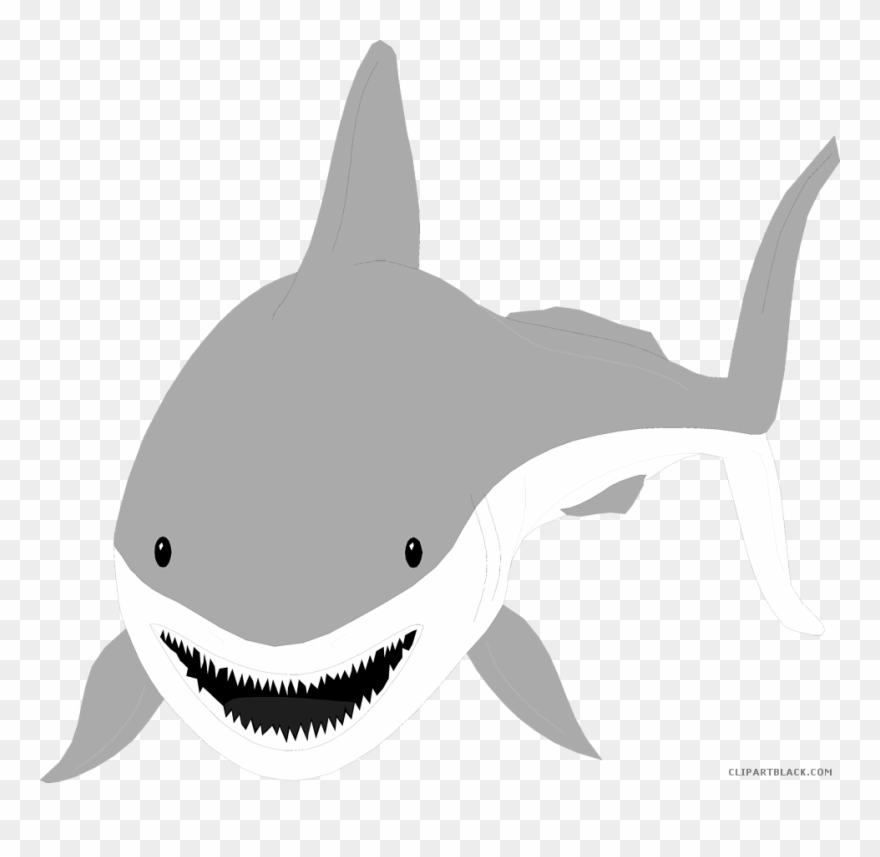 Shark transparent background. Clipart great white with
