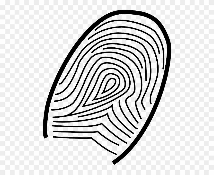Fingerprint Clip Art - Png Download (#1978296) - PinClipart