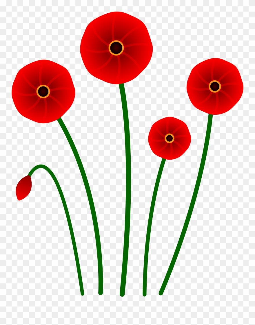 1886 In County Mayo Ireland Poppy Flower Cartoon Clipart 20068