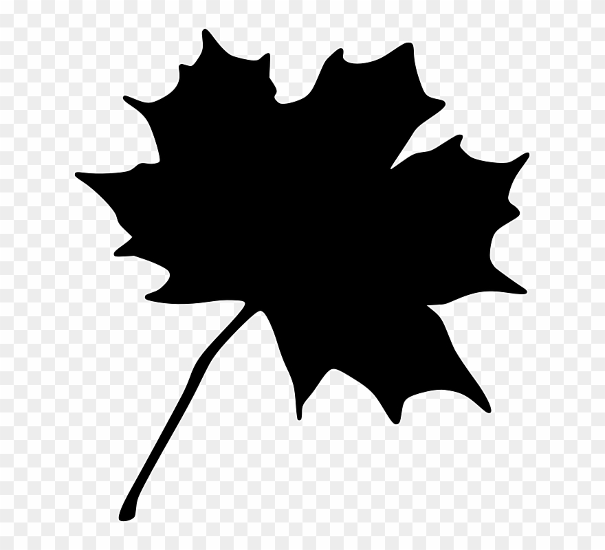 Free Vector Maple Leaf Clip Art - Maple Leaf Clip Art - Free Transparent  PNG Clipart Images Download